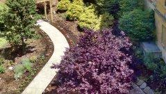 nanticoke-gardens-lourdes-hospital-healing-garden-2.jpg