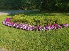 nanticoke-gardens-dorchest-park-1.jpg