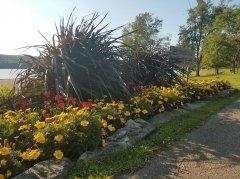 nanticoke-gardens-dorchest-park-3.jpg