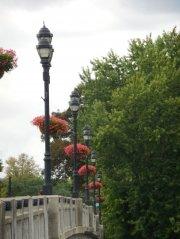nanticoke-gardens-security-mutual-sponsored-city-of-binghamton-baskets-2.jpg