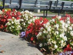 nanticoke-gardens-world-war-2-memorial-endicott-ny.jpg